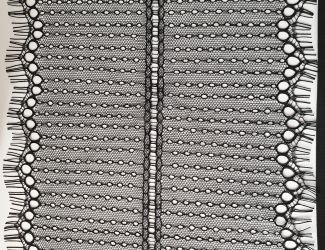 Кружево французское ширина 20см черное